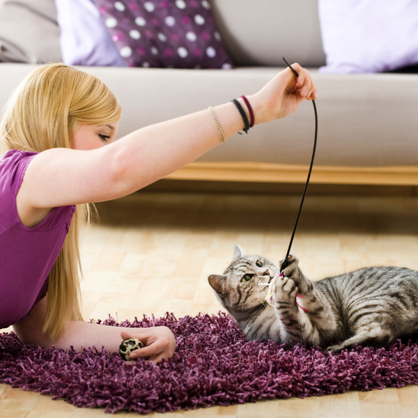 woman on the ground playing with her cat by dangling a wand toy