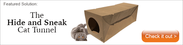 Collapsible paper cat tunnel, the Hide and Sneak
