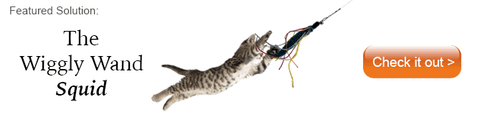 tiger striped cat in mid air chasing a wiggly wand squid cat toy
