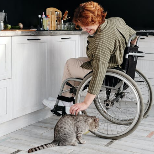woman in a wheelchair in a kitchen leaning down to pet a tabby cat