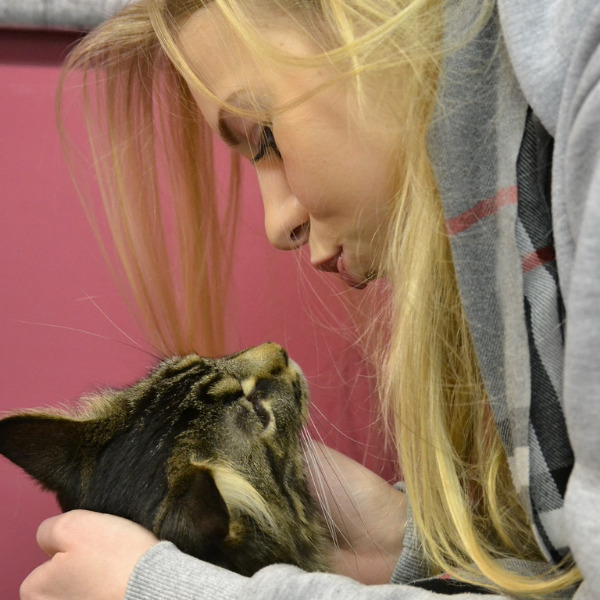 blond haired woman leaning in to kiss a tabby cat that is looking up at her