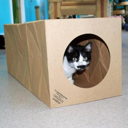 Hide and Sneak - 2 Pack Unique Cat Tunnel