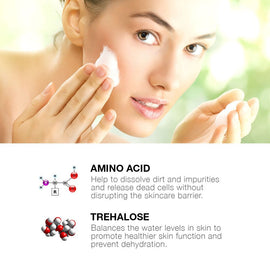 Amino Acid Foaming Facial Cleanser for Daily Face Washing (3.4 OZ)