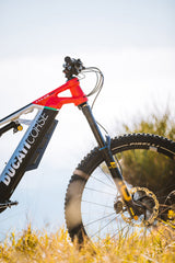 Ducati THOK TK-01RR Electric Bicycle e-Enduro Bike