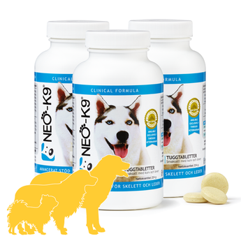 NEO-K9 Clinical Sample Product - SINGLE
