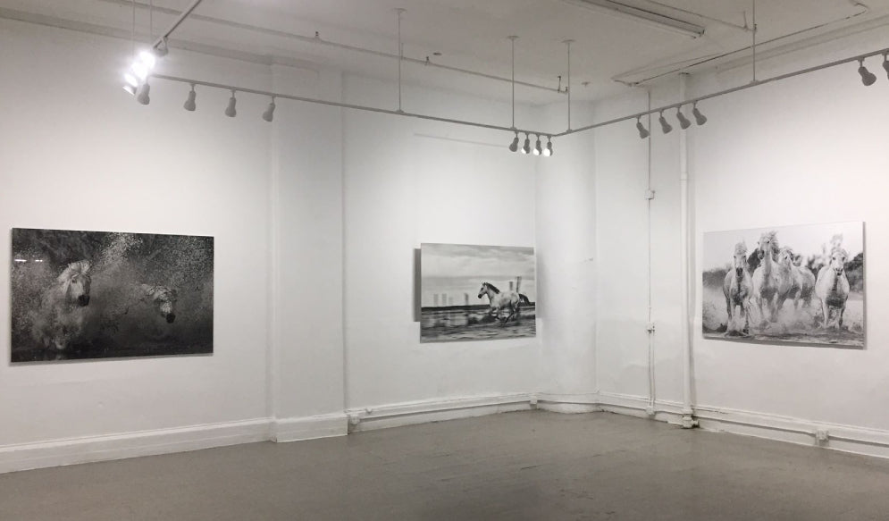NYC SPACE RENTAL FOR ART EXHIBITIONS
