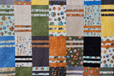 National Parks Sock It To Me Quilt Kit