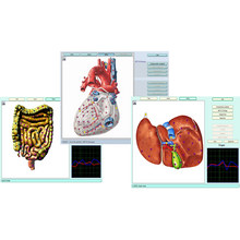 Load image into Gallery viewer, 3D Molecular Resonance Scan-Service-B4ItHappens Sdn Bhd