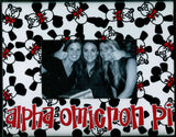 Frame with Printed Mat - Alpha Omicron Pi
