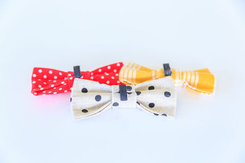 Bow ties for dogs. French Bulldogs