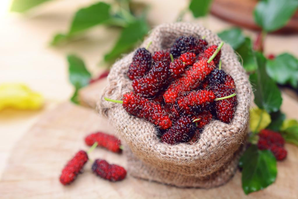 The Natural Goodness of Mulberries