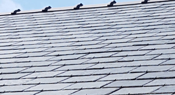 Western Natural Roof Slate - Smooth