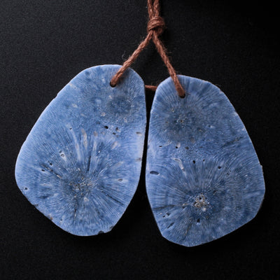 Drilled Freeform Natural Blue Sponge Coral Earring Pair Cabochon Cab Pair Irregular Raw Organic Gemstone Bead Pair