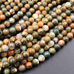 "Natural Rainforest Rhyolite Jasper 4mm 6mm 8mm 10mm Smooth Polished Round Beads 16"" Strand"