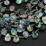 "Natural Abalone Teardrop Beads 14mm 18mm Iridescent Rainbow Blue Green Red Pink Flash Real Genuine Abalone Earring Beads 16"" Strand"