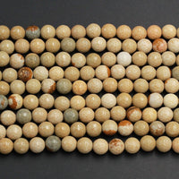 "Natural Cripple Creek Jasper 8mm 10mm Faceted Round Beads High Polish Faceted Sphere Beads Earthy Beige Brown Teal Stone Full 16"" Strand"