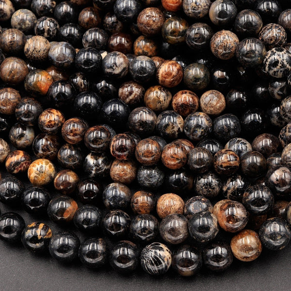 "Black Fossil Coral Beads 7mm 8mm 9mm 10mm 12mm Round Beads 16"" Strand"