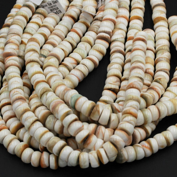 "Shiva Eye Shell Beads Large Thick Rondelle Saucer Wheel Organic Natural Shell Nugget White Orange Green Brown Shell Beads 17"" Strand"