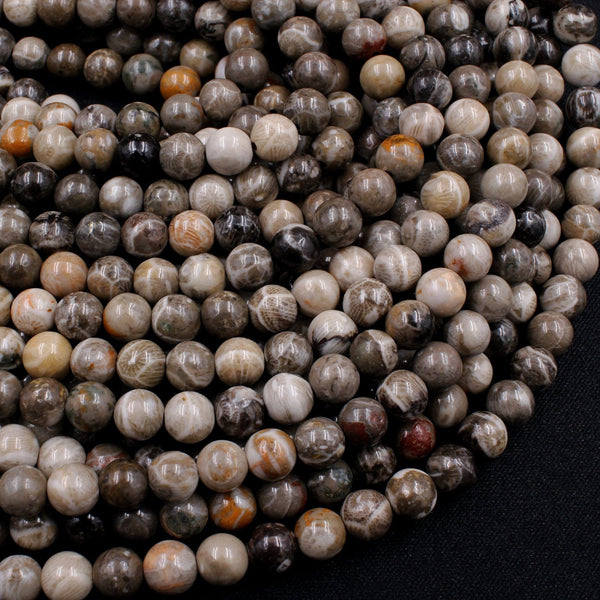 "Natural Fossil Coral 6mm Round Beads Dark Grey Brown Tan Beige Beads 16"" Strand"