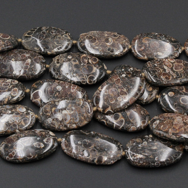 "Large Turritella Fossil Agate Beads Huge Long Oval Freeform Irregular Focal Bead Pendant Nuggets Earthy Brown Fossil 16"" Strand"