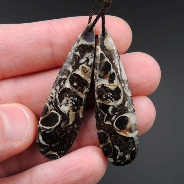 Natural Turritella Agate Fossil Earring Pair Cabochon Cab Pair Drilled Teardrop Matched Earrings Bead Pair E2438