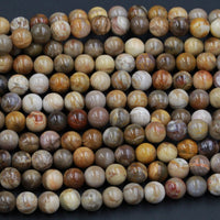 "Natural Petrified Wood Beads 4mm 6mm 8mm Round Beads Earthy Brown Beige Fossil Round Beads 16"" Strand"