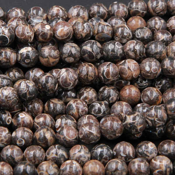 "Natural Turritella Agate Fossil Round Beads 4mm 6mm  8mm 10mm Round Beads Genuine Real Dark Brown Black Fossil From Wyoming 16"" Strand"