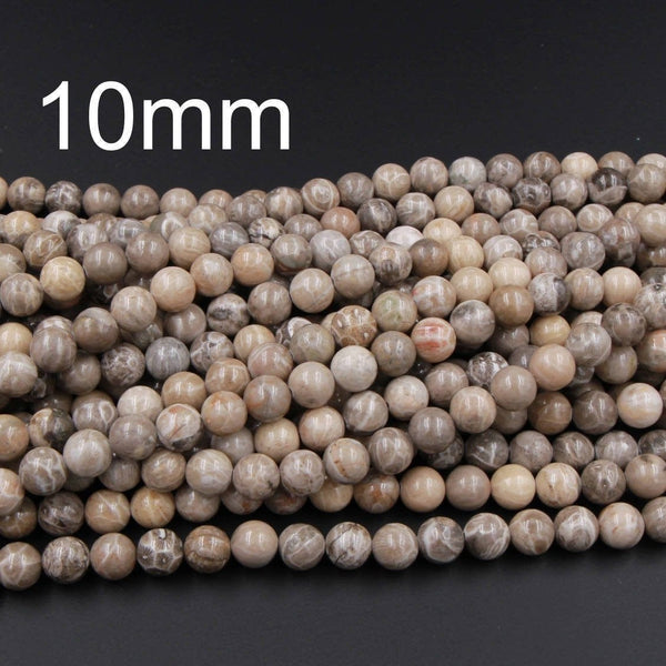 "Natural Michigan Petoskey Stone Fossil Coral Round 6mm 8mm 10mm 12mm 14mm Round Beads Brown Tan Beige Beads 16"" Strand"