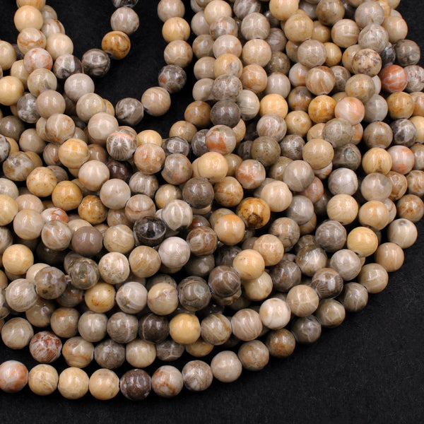 "Natural Fossil Coral 6mm 8mm Round Organic Earthy Beads Grey Brown Tan Beige Yellow Beads 16"" Strand"
