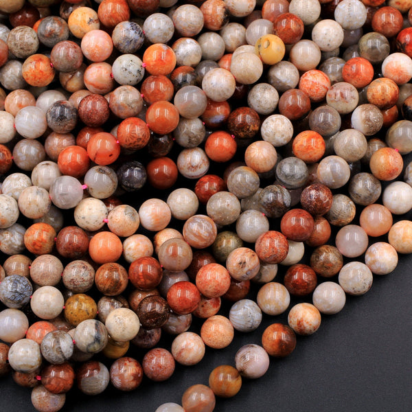 "Natural Fossil Coral Round Beads 6mm 8mm Vibrant Red Orange Brown Tan Beige Beads 16"" Strand"