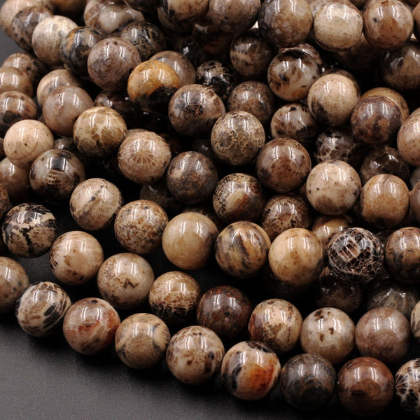 "Natural Black Brown Fossil Coral 8mm Round Beads 16"" Strand"