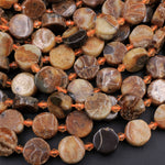 "Natural Ammonite Fossil Coin Disc Beads Brown 13mm 16"" Strand"