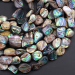 "Large Freeform Natural Abalone Nugget Irregular Square Beads Iridescent Rainbow Glow Blue Green Red Pink Flash 16"" Strand"