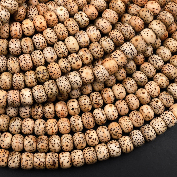 "Natural Daemonorops Margaritae Rondelle Beads 6mm 8mm 10mm ""Star and Moon"" Bodhi Seed Prayer Beads Meditation Mala Making 15.5"" Strand"