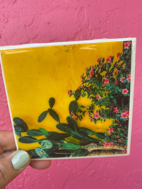 Cactus and Flowers on a Yellow Wall Tile / Coaster