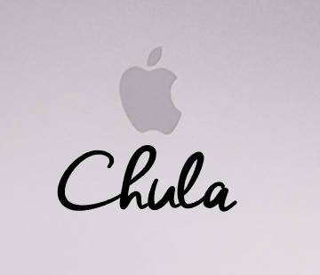 Chula Vinyl Transfer | Car Decal | Laptop Sticker by Very That --- Bumper sticker | vinyl Transfer | Yeti Sticker