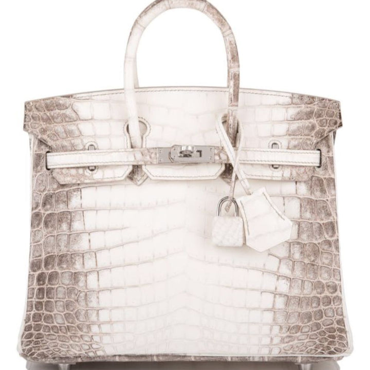 Hermès Birkin 30 Himalaya Crocodile Niloticus Matte Palladium Hardware PHW X Stamp 2016 <!27878907> - The French Hunter