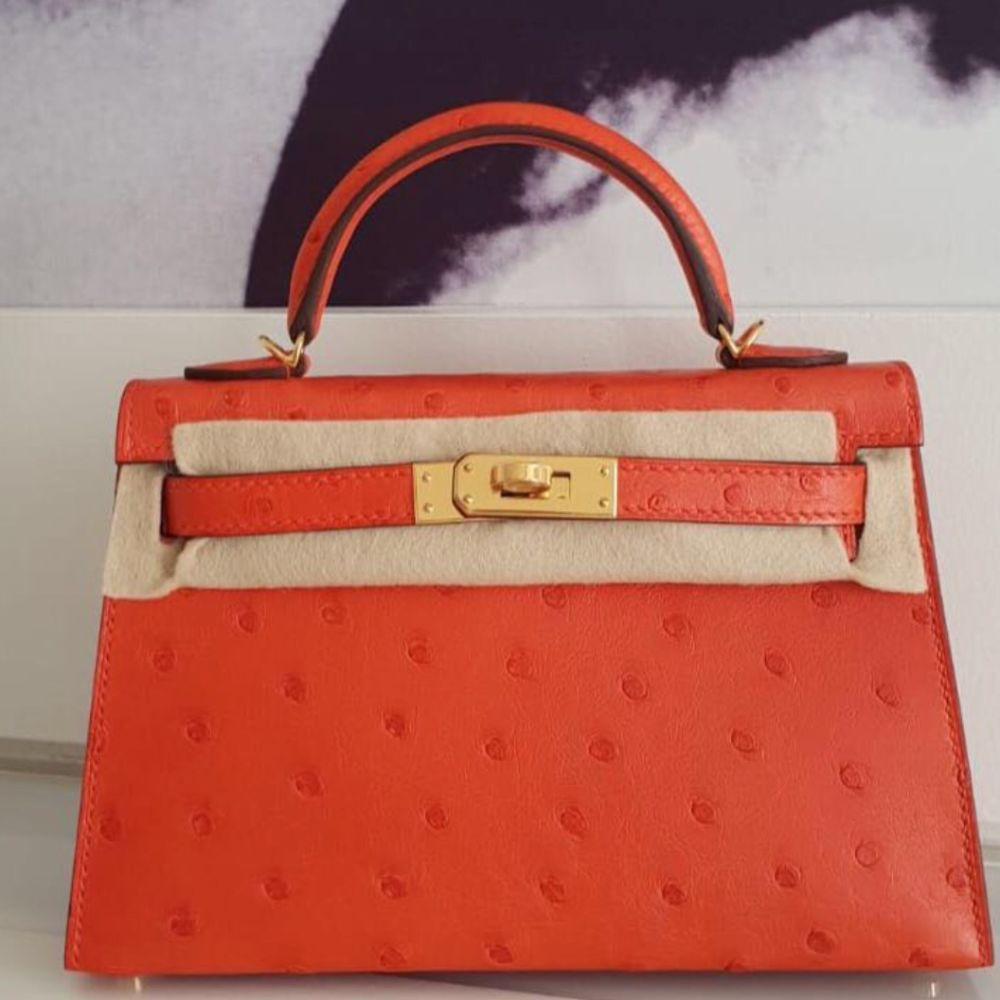 Hermès Kelly 20 Capucine Ostrich Gold Hardware GHW C Stamp 2018 <!30445476> - The French Hunter