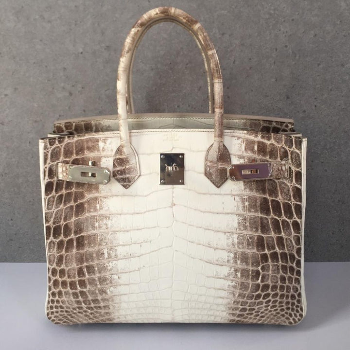 Hermès Birkin 30 Himalaya Crocodile Niloticus Matte Palladium Hardware PHW X Stamp 2016 - The French Hunter