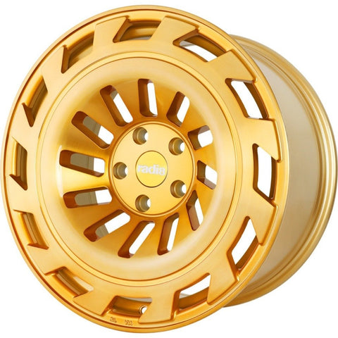 radi8 r8t12 Gold / Brushed Face | Offered by CedarPerformance
