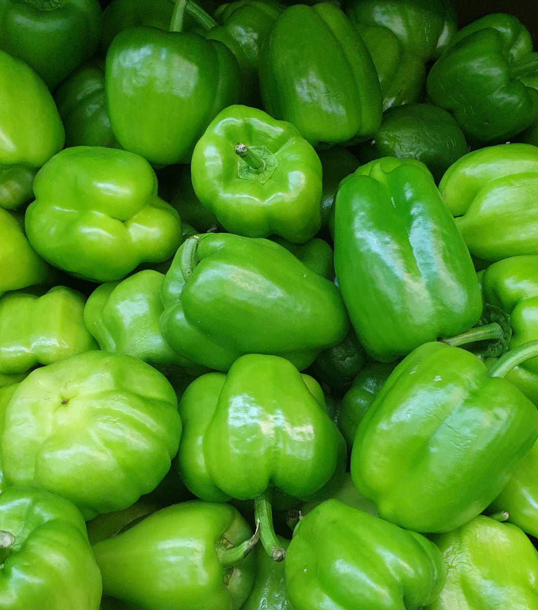 Green Peppers / capsicum