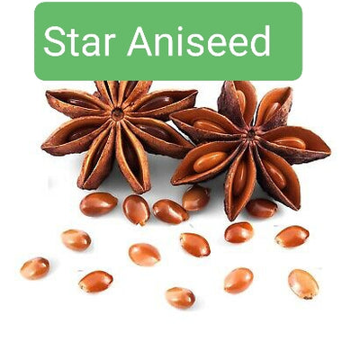 Badian ( Star Aniseed whole  )