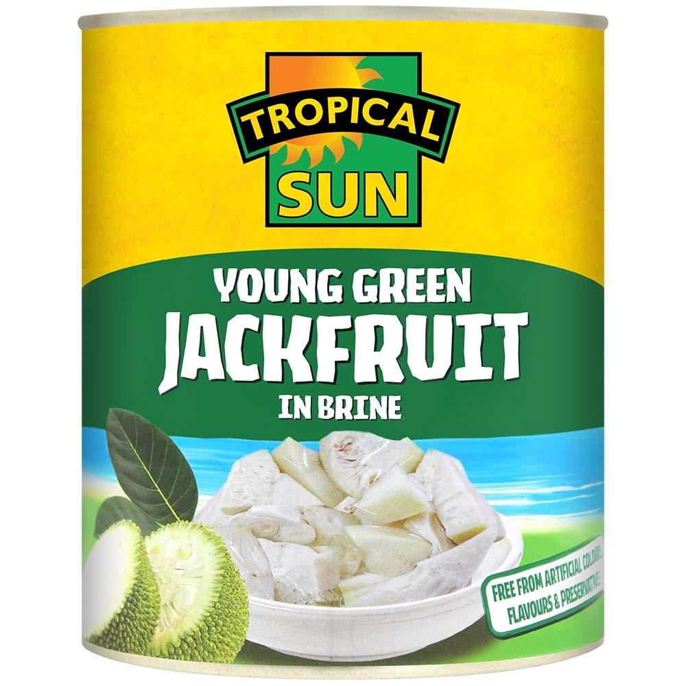 Tropical Sun Young Green Jackfruit in Brine 565g