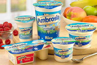 Ambrosia  Custards & Rice Puddings