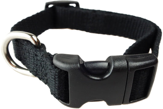 Organic Bamboo Dog Collar - Black