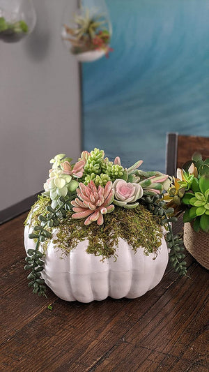 White Faux Pumpkin with Succulents Fall Table Decoration - Autumn Centerpiece