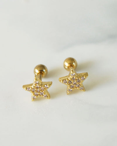 Stainless Steel - Star Stud Earrings