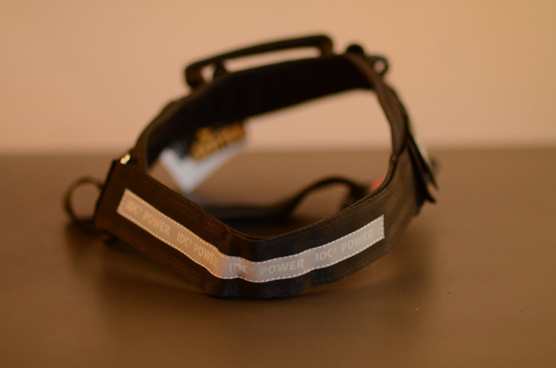DOG Harness - Black