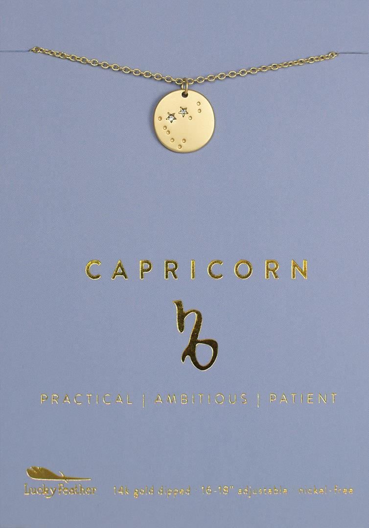Zodiac Necklace Capricorn