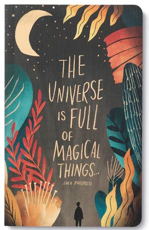 The Universe is Full of Magical Things